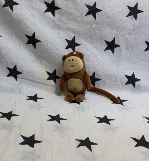Small Brown Monkey